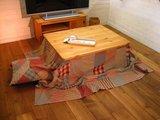 kotatsu coverd.jpg