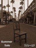 2017 summer 文字入り1s.jpg